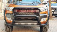 Ford Ranger F150 Raptor Stil Panjur